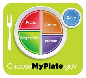 חלבון בצלחת משרד החקלאות האמריקאי