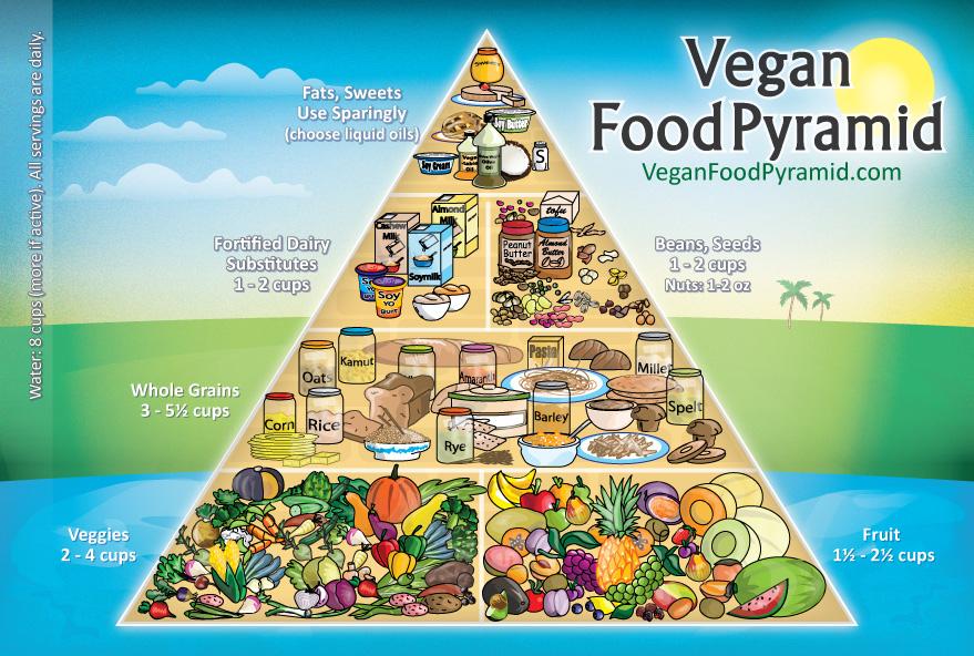 פירמידת המזון הטבעונית